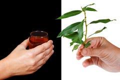 Stile di vita sano - un'alternativa a bere Immagini Stock