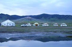 Stile di vita selvaggio oltre al lago qinghai immagine stock