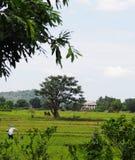 Stile di vita TAILANDESE contemporaneo della casa dell'agricoltore Fotografia Stock Libera da Diritti
