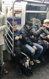 Stile di vita urbano del treno NYC del MTA dell'automobile di sottopassaggio di guida del cane dell'animale domestico della gente immagine stock
