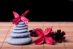 Stile di zen organizzato Potpourri fotografia stock libera da diritti