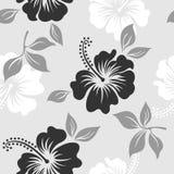 Stile floreale del modello di vettore di estate del fondo senza cuciture dell'ibisco in bianco e nero Fotografia Stock Libera da Diritti
