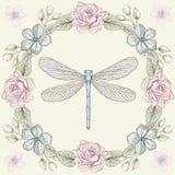 Stile floreale dell'incisione della libellula e della struttura immagini stock