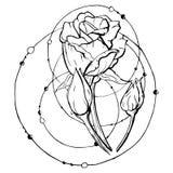 Stile incisione del fiore illustrazione vettoriale
