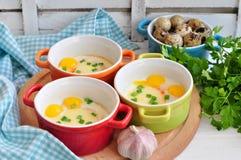 Stile italiano, uova al forno con la mozzarella e cipolla verde, Fotografia Stock Libera da Diritti