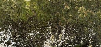 Stile marrone di pietra dell'annata della parete del primo piano fotografie stock libere da diritti
