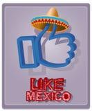 Stile messicano in un sombrero Fotografia Stock Libera da Diritti