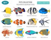 Stile piano stabilito dell'acquario del pesce dell'icona d'acqua dolce delle razze isolato sopra royalty illustrazione gratis