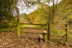 Stile in Plessey Woods Royalty Free Stock Photos