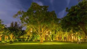 Stile tailandese delle lanterne che pende dall'albero per decorare Lampada da bambù di vimini dall'albero da decorare thailand Fotografia Stock