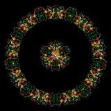 Stile tradizionale messicano del ricamo del tessuto dalla città di Tenango, hidalgo, México Mandala Floral Composition con gl illustrazione di stock