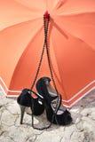 Stiletthäl, halsband och paraply på en sprucken jord royaltyfria bilder