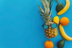 Stilfull ananas i solglasögon och bananer, apelsiner, citroner, avoca fotografering för bildbyråer
