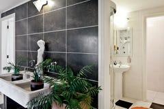 stilfull badrum arkivfoton