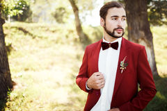 Stilfull brudgum i smokingen som ser bort den röda dräktmarsalaen, burgundy fluga Arkivfoto