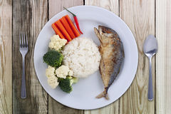 Stilfull food& x28 för makrillchili; Thailändsk food& x29; Royaltyfria Foton