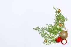 Stilfull julsammansättning med granfilialer och garneringar på vit bakgrund Royaltyfri Foto