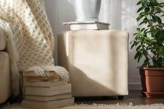 Stilfull ljust inre av vardagsrum Inviterande bekväm soffa med den handgjorda woolen filten, böcker och den inlagda växten arkivfoton