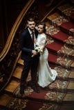 Stilfull lyxig brud och stilig elegant brudgum på gammal träst arkivbild