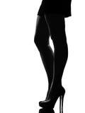 Stilfull silhouette Arkivbild