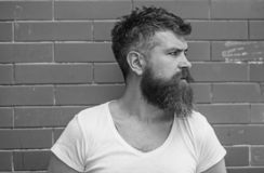 Stilfull skäggig hipster Att ansa för skägg har aldrig varit så lätt Skäggomsorgtrick ska hålla ditt se för ansikts- hår royaltyfri foto