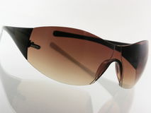 stilfull solglasögon arkivbild
