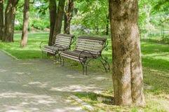 Stilfulla bänkar i sommar parkerar Arkivfoton