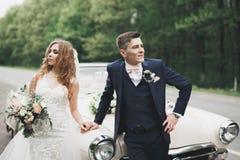 Stilfulla brölloppar, brud, ansar att kyssa och att krama på den retro bilen royaltyfria bilder