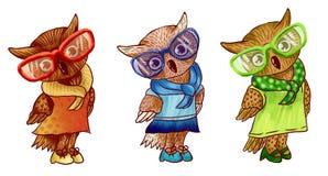 Stilfulla gå i ax ugglor med exponeringsglas och kläder på en vit bakgrund illustration Gulliga owls stock illustrationer