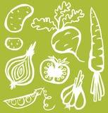 Stilfulla grönsaker Royaltyfria Foton