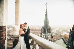Stilfulla härliga brölloppar som kysser och kramar på bakgrundspanoramautsikt av den gamla staden arkivbilder