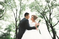 Stilfulla par av lyckliga nygifta personer som går i parkera på deras bröllopdag med buketten Arkivfoto
