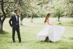 Stilfulla par av lyckliga nygifta personer som poserar i parkera p? deras br?llopdag arkivbild