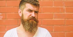 Stilfullt brämskägg Att ansa för skägg har aldrig varit så lätt Skäggomsorgtrick ska hålla ditt se för ansikts- hår arkivfoton