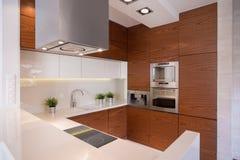 Stilfullt kök med keramiska tegelplattor Royaltyfri Foto