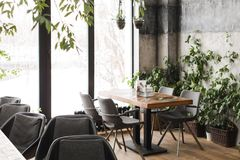Stilfullt kafé i den frostiga morgonen Arkivbild