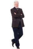 Stilig äldre man med grå färgskägget Royaltyfri Bild