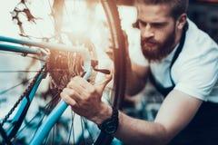 Stilig cykelmekaniker Repair Bicycle i seminarium royaltyfri bild