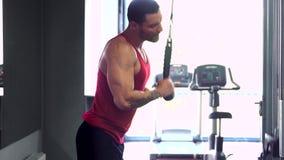 Stilig muskulös konditionkroppsbyggare som gör tungviktövningen för triceps stock video