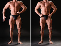 Stilig muskulös kroppsbyggare Royaltyfria Foton