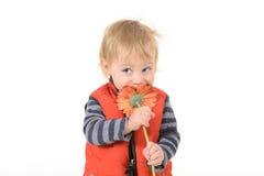 Stilig pojke med röda gerberas för mamma royaltyfri fotografi