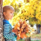 Stilig pysinnehavgrupp av lönnlöv Höstungemode Lycklig och vård- barndom Lyckligt barn som spelar med falle fotografering för bildbyråer