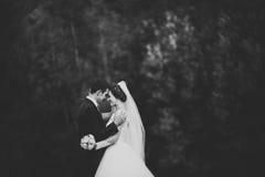 Stilig romantisk brudgum och härlig brud som poserar nära floden i sceniska berg royaltyfria bilder