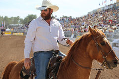 Stilig skäggcowboy på häst arkivfoton