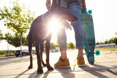 Stilig ung man med hans hund som skateboarding i parkera Arkivbild