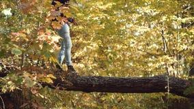 Stiligt grabblopp Aff?rsf?retag- och semesterbegrepp Fotvandrare som fotvandrar i skog arkivfilmer