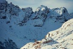 Stiligt manlopp i vinterberg med kameran arkivbild