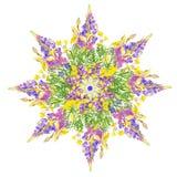 Stiliserad blom- modell för stjärna Arkivfoto