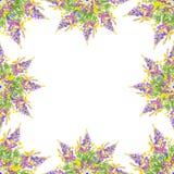 Stiliserad blom- sömlös modell för ram - bukett för inbjudan Arkivfoto
