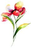 Stiliserad blommavattenfärgillustration Arkivbilder